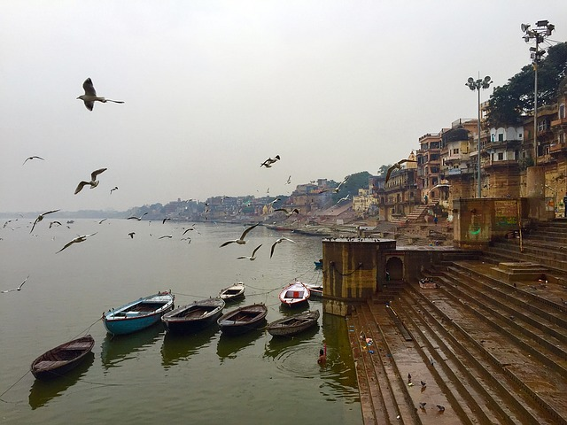 Wonders of the Ganges